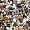 6 Pounds River Rock Stones, Natural Decorative Polished Mixed Pebbles Gravel,Outdoor Decorative Stones for Plant Aquariums, Landscaping, Vase Fillers