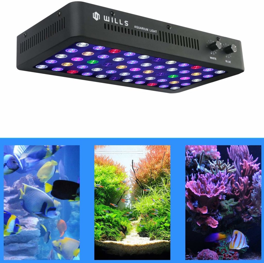 Best Led Aquarium Lighting For Plants